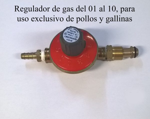 Regulador de gas